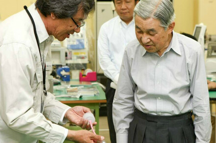A visit by Emperor Akihito and Empress Michiko (Japan)